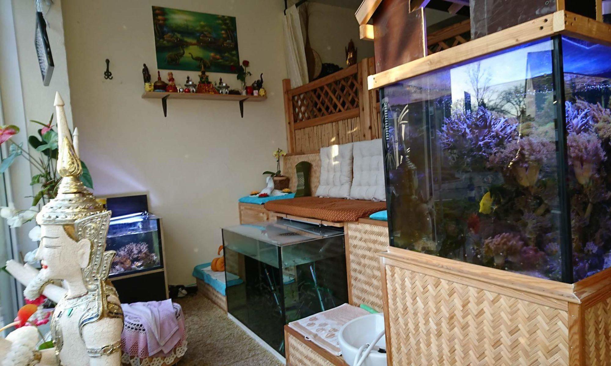 aquarius-dr-fish-spa